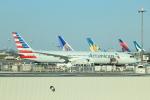 cassiopeiaさんが、羽田空港で撮影したアメリカン航空 787-9の航空フォト(写真)