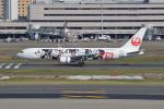 JA1118Dさんが、羽田空港で撮影した日本航空 767-346/ERの航空フォト(写真)