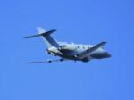 tetuさんが、札幌飛行場で撮影した航空自衛隊 U-125A(Hawker 800)の航空フォト(写真)