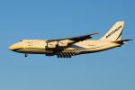 goldengoldsさんが、成田国際空港で撮影したアントノフ・エアラインズ An-124-100 Ruslanの航空フォト(写真)
