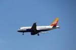 mktさんが、スワンナプーム国際空港で撮影したドゥルク航空 A319-115の航空フォト(写真)