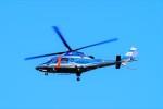 hidetsuguさんが、札幌飛行場で撮影した北海道警察 A109E Powerの航空フォト(写真)