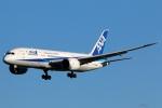 まえちんさんが、成田国際空港で撮影した全日空 787-8 Dreamlinerの航空フォト(写真)