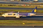 ちかぼーさんが、羽田空港で撮影したスカイマーク 737-81Dの航空フォト(写真)
