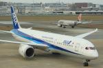 おみずさんが、福岡空港で撮影した全日空 787-9の航空フォト(写真)