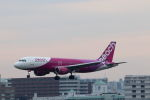 funi9280さんが、福岡空港で撮影したピーチ A320-214の航空フォト(写真)