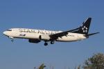 キイロイトリさんが、伊丹空港で撮影した全日空 737-881の航空フォト(写真)