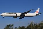 キイロイトリさんが、伊丹空港で撮影した日本航空 777-346の航空フォト(写真)