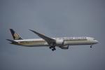JA8037さんが、成田国際空港で撮影したシンガポール航空 787-10の航空フォト(写真)