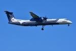 はるかのパパさんが、成田国際空港で撮影したオーロラ DHC-8-402Q Dash 8の航空フォト(写真)