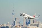 pikazouさんが、羽田空港で撮影した日本航空 737-846の航空フォト(飛行機 写真・画像)