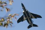 siroさんが、入間飛行場で撮影した航空自衛隊 T-4の航空フォト(写真)