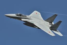 minoyanさんが、岐阜基地で撮影した航空自衛隊 F-15J Kai Eagleの航空フォト(飛行機 写真・画像)