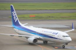 airportfireengineさんが、羽田空港で撮影した全日空 737-881の航空フォト(飛行機 写真・画像)