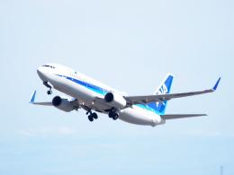 むらさめさんが、新千歳空港で撮影した全日空 737-881の航空フォト(飛行機 写真・画像)