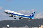 yasunori0624さんが、伊丹空港で撮影した全日空 A321-211の航空フォト(写真)