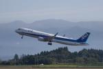 かずまっくすさんが、鹿児島空港で撮影した全日空 A321-211の航空フォト(写真)