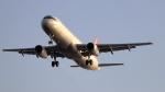 誘喜さんが、アタテュルク国際空港で撮影したターキッシュ・エアラインズ A321-231の航空フォト(写真)