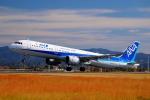 wish-blueさんが、高知空港で撮影した全日空 A321-272Nの航空フォト(写真)