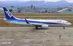 RINA-281さんが、小松空港で撮影した全日空 737-881の航空フォト(写真)