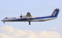 RINA-200さんが、小松空港で撮影したANAウイングス DHC-8-402Q Dash 8の航空フォト(写真)