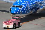 キイロイトリさんが、那覇空港で撮影した日本トランスオーシャン航空 737-8Q3の航空フォト(写真)