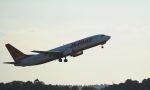 takatakaさんが、成田国際空港で撮影したチェジュ航空 737-85Fの航空フォト(写真)