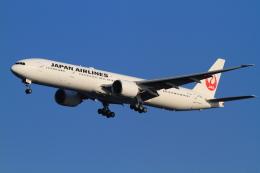 武彩航空公司(むさいえあ)さんが、羽田空港で撮影した日本航空 777-346/ERの航空フォト(飛行機 写真・画像)