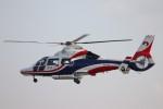 ゆう改めてさんが、熊本空港で撮影した熊本県防災消防航空隊 AS365N3 Dauphin 2の航空フォト(写真)