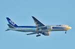鉄バスさんが、羽田空港で撮影した全日空 777-281/ERの航空フォト(写真)