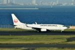 Dojalanaさんが、羽田空港で撮影した日本航空 737-846の航空フォト(写真)
