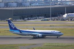 meijeanさんが、羽田空港で撮影した全日空 737-881の航空フォト(飛行機 写真・画像)