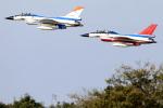 take_2014さんが、岐阜基地で撮影した航空自衛隊 F-2Aの航空フォト(飛行機 写真・画像)