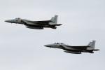 take_2014さんが、岐阜基地で撮影した航空自衛隊 F-15J Kai Eagleの航空フォト(写真)