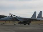 くまのんさんが、岐阜基地で撮影した航空自衛隊 F-15J Kai Eagleの航空フォト(飛行機 写真・画像)