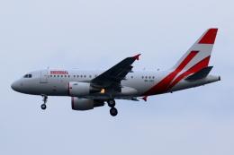 tuckerさんが、羽田空港で撮影したユニバーサルエンターテインメント A318-112 CJ Eliteの航空フォト(写真)