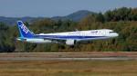 撮り撮り人さんが、岡山空港で撮影した全日空 A321-211の航空フォト(写真)