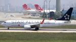 誘喜さんが、アタテュルク国際空港で撮影したターキッシュ・エアラインズ 737-8F2の航空フォト(写真)