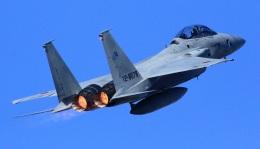 41nenさんが、岐阜基地で撮影した航空自衛隊 F-15DJ Eagleの航空フォト(写真)
