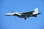 yabyanさんが、岐阜基地で撮影した航空自衛隊 F-15DJ Eagleの航空フォト(飛行機 写真・画像)