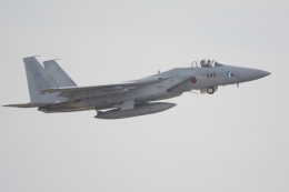 eagletさんが、岐阜基地で撮影した航空自衛隊 F-15J Kai Eagleの航空フォト(写真)