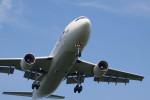 BENKIMAN-ENLさんが、広島空港で撮影した日本航空 A300B4-622Rの航空フォト(写真)