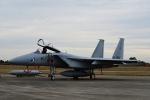 Joshuaさんが、岐阜基地で撮影した航空自衛隊 F-15J Eagleの航空フォト(写真)