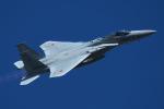 leoncatさんが、岐阜基地で撮影した航空自衛隊 F-15J Eagleの航空フォト(写真)