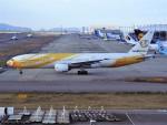 PW4090さんが、関西国際空港で撮影したノックスクート 777-212/ERの航空フォト(写真)