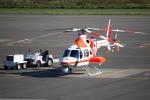 セブンさんが、札幌飛行場で撮影した朝日航洋 430の航空フォト(写真)