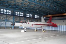 eagletさんが、岐阜基地で撮影した防衛装備庁 X-2 (ATD-X)の航空フォト(写真)