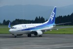 kumagorouさんが、鹿児島空港で撮影した全日空 737-781の航空フォト(写真)