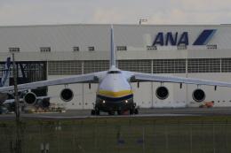 ☆ライダーさんが、成田国際空港で撮影したアントノフ・エアラインズ An-124 Ruslanの航空フォト(飛行機 写真・画像)