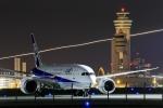 Rundy's Airgraphyさんが、羽田空港で撮影した全日空 787-8 Dreamlinerの航空フォト(飛行機 写真・画像)